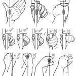 Archery Beginners - Bow Hand